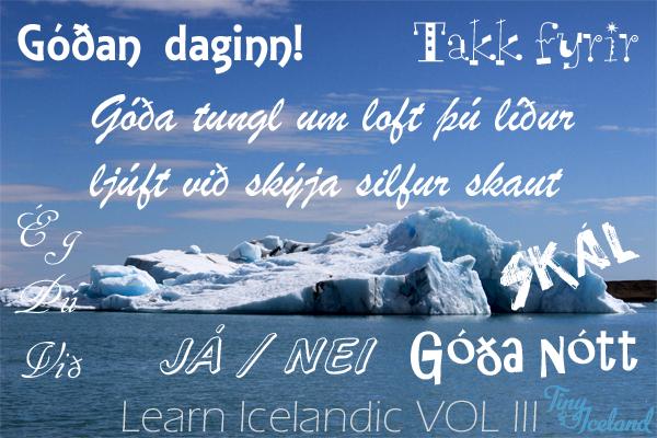 Learn Icelandic Vol. 3